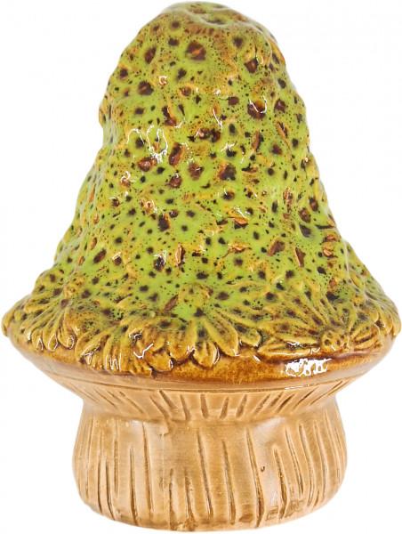 Maj Isenkram Großer Pilz Gänseblümchen Grün
