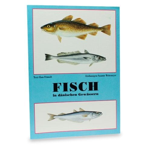 Fisch in dänischen Gewässern
