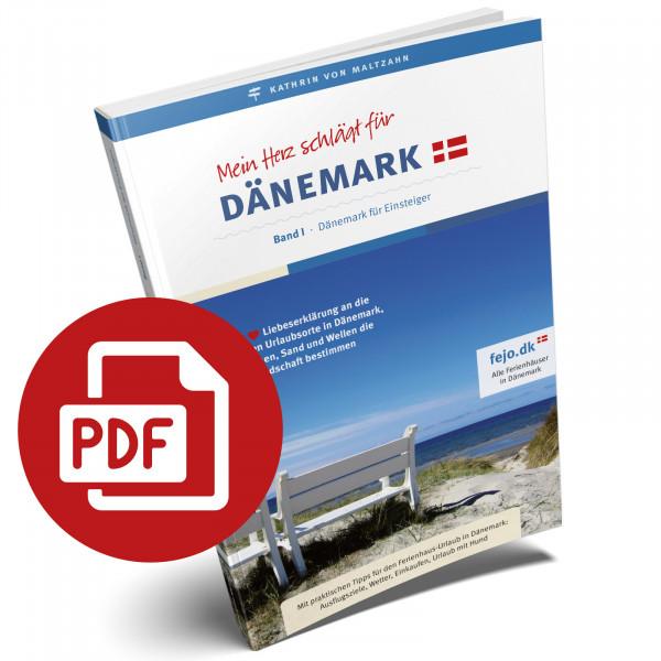 eBook Reiseführer Dänemark für Einsteiger