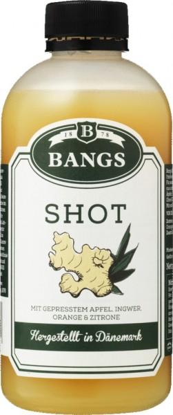 Bangs Ingwer Shot 300ml
