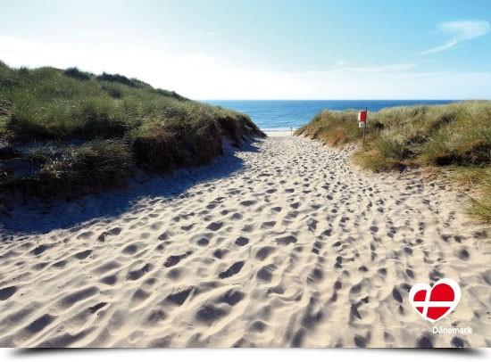 "Postkarte ""Weg zum Strand in Vester Husby"""