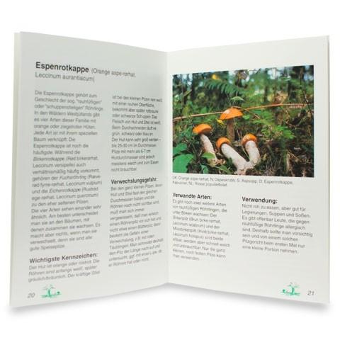 Ein Pilzbuch für Westjütland